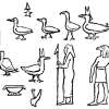 Histoire veridique du canard bertall 2